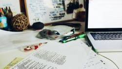 Skundai, atsiliepimai, pageidavimai: ko tikėtis iš savo klientų internete