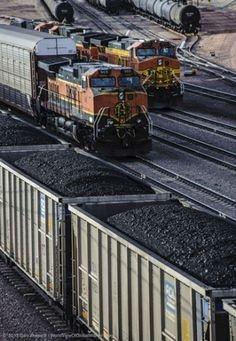 Kodėl malkas vis dažniau pakeičia akmens anglis?