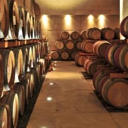 Vynas be vynuogių: lietuviška vyndarystės tradicija