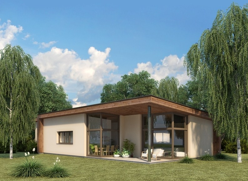 Karkasiniai namai: nebrangus, greitas, kokybiškas namų statybos būdas ar trumpalaikis džiaugsmas?