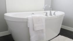 Santechnika voniai: nuo įsigyjimo iki priežiūros