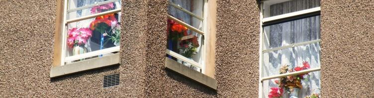 Naujausios langų gamybos tendencijos