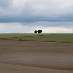 Ekologiškas ūkis – viena inovatyviausių verslo šakų