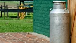 Pieno gaminių pramonė ir pelninga, ir reikalinga
