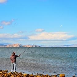 Ekologinė žuvininkystė – besivystanti ekologinio žemės ūkio sritis
