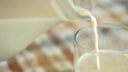 Pieno produktų rinka ir jų įtaka žmogaus sveikatai