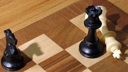 Komercinę sėkmę užtikrinanti lyderystė: gero vadovo bruožai